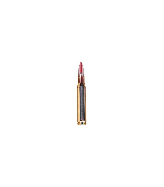 Hornady 204 Ruger NTX