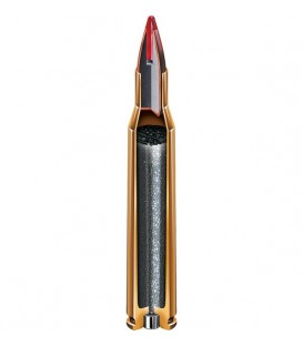 Hornady 204 Ruger SP