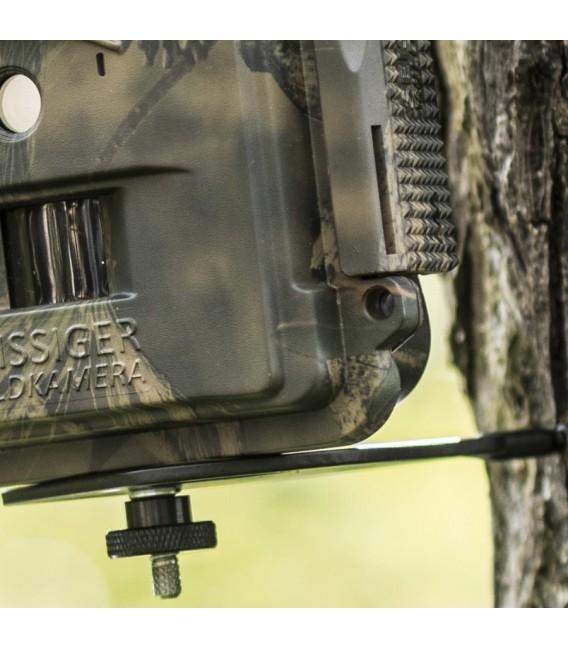 Kameros tvirtinimo platforma į medį