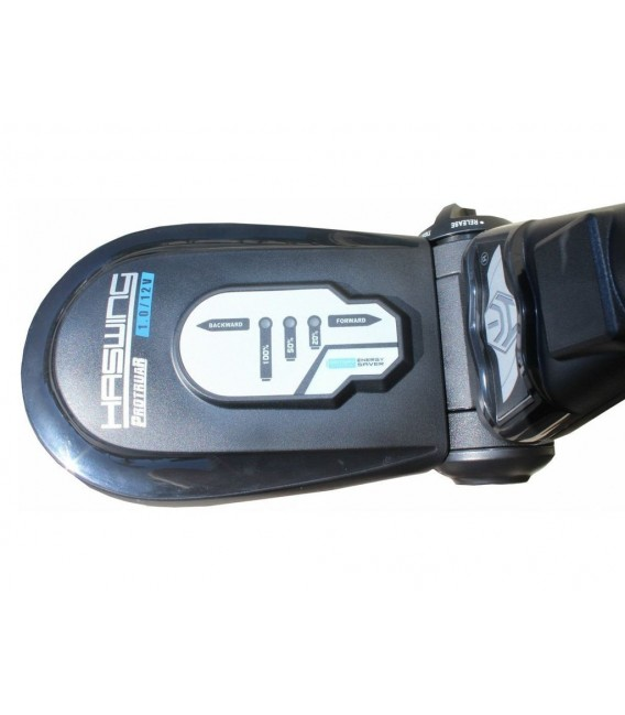 Haswing Protruar 1 AG variklis